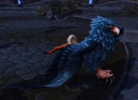 Image of Bloodsail Gryphon