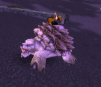 Image of Gurgll the Tracking Turtle