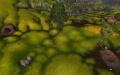 Sunsoaked Meadow.jpg