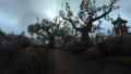 Tol Barad Peninsula 008.jpg