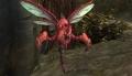 Crimsonwing Wasp.jpg