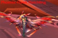Image of Phoenix-Hawk Hatchling