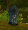 Vilebranch Wolf Pup.jpg