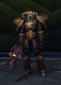 Image of Darkfallen Commander