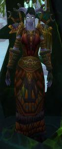 Image of Elemental Defender