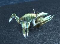 Image of Rotting Crawler