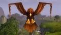 Plainshawk.jpg