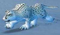 Imagen de Leopardo de las nieves