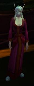 Image of Blood Elf Pilgrim