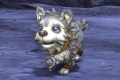 Frost Wolf Pup.jpg
