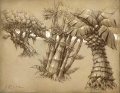 Lost Isles flora concept art.jpg
