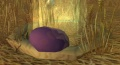 Yellow Raptor Nest.jpg