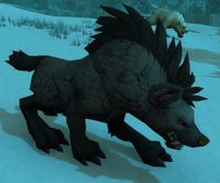 Image of Tundra Scavenger