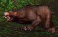 Ashenvale Bear.jpg