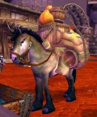Image of Caravan Packhorse
