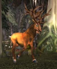Image of Darkshore Stag