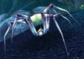 Spindleweb Lurker.jpg