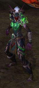 Image of Illidari Veteran