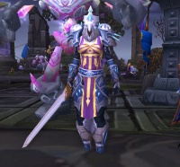 Image of Kirin Tor Guardian