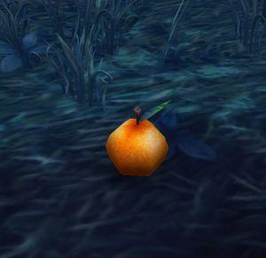 O'ruk Orange.jpg