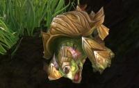 Image of Bulgeback Tortoise