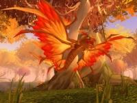 Image of Feral Dragonhawk Hatchling