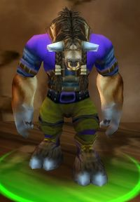 Image of Rumstag Proudstrider
