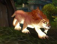 Image of Amani Lynx Cub