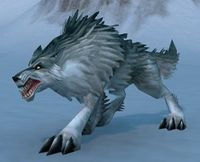 Image of Snow Tracker Wolf