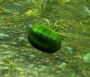 Melonfruit.jpg