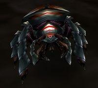 Image of Borer Beetle