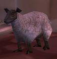 Elwynn Lamb.jpg