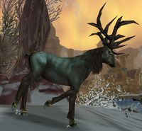 Image of Blighted Elk