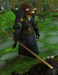 Image of Horde Druid