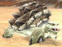 Image of Sparkleshell Tortoise