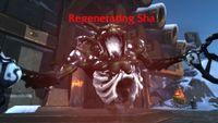 Image of Regenerating Sha