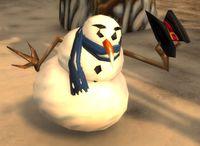 Image of Strange Snowman