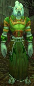 Image of Whisperwind Healer