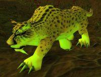 Imagen de Jaguar del pantano