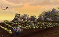 The Rows pumpkins.jpg