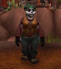 Image of Turtlemaster Odai