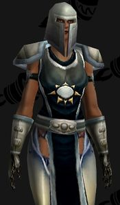 Image of Argent Protector