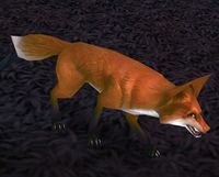 Image of Blackwald Fox