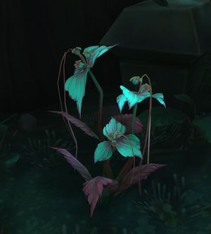 Gravebloom.jpg
