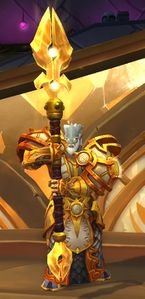 Image of Lightforged Protector