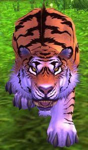 Image of Pei-Wu Tiger