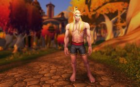 Model updates - blood elf male 2.jpg