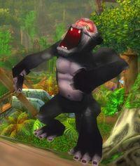 Image of Curious Jungle Monkey