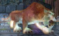 Image of Amani Lynx Spirit