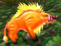 Image of Young Thistle Boar
